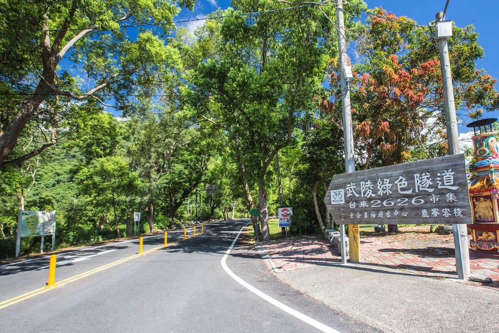 台東旅遊武陵綠色隧道包車景點介紹