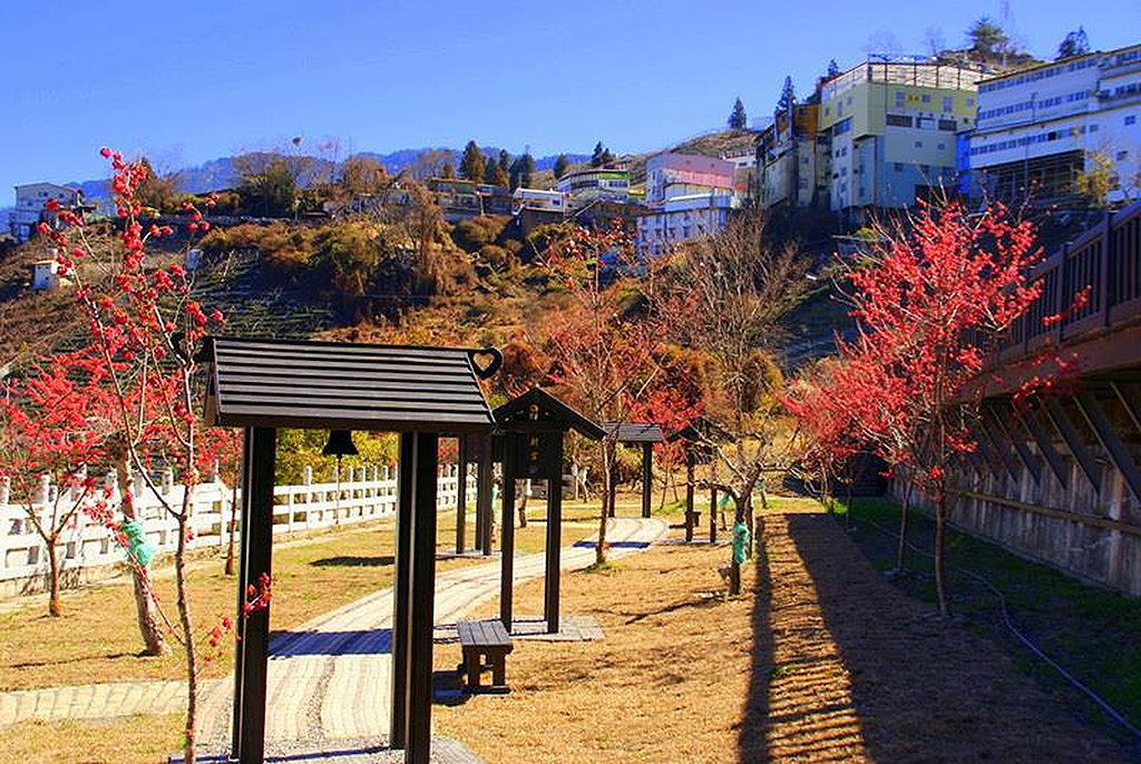 梨山,梨山風景區,梨山景點,梨山遊客中心,梨山觀光景點,梨山景觀