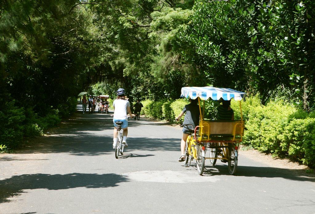 桃園,永安漁港,綠色走廊,桃園包車