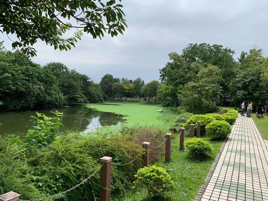 台北,大安森林公園,台北包車